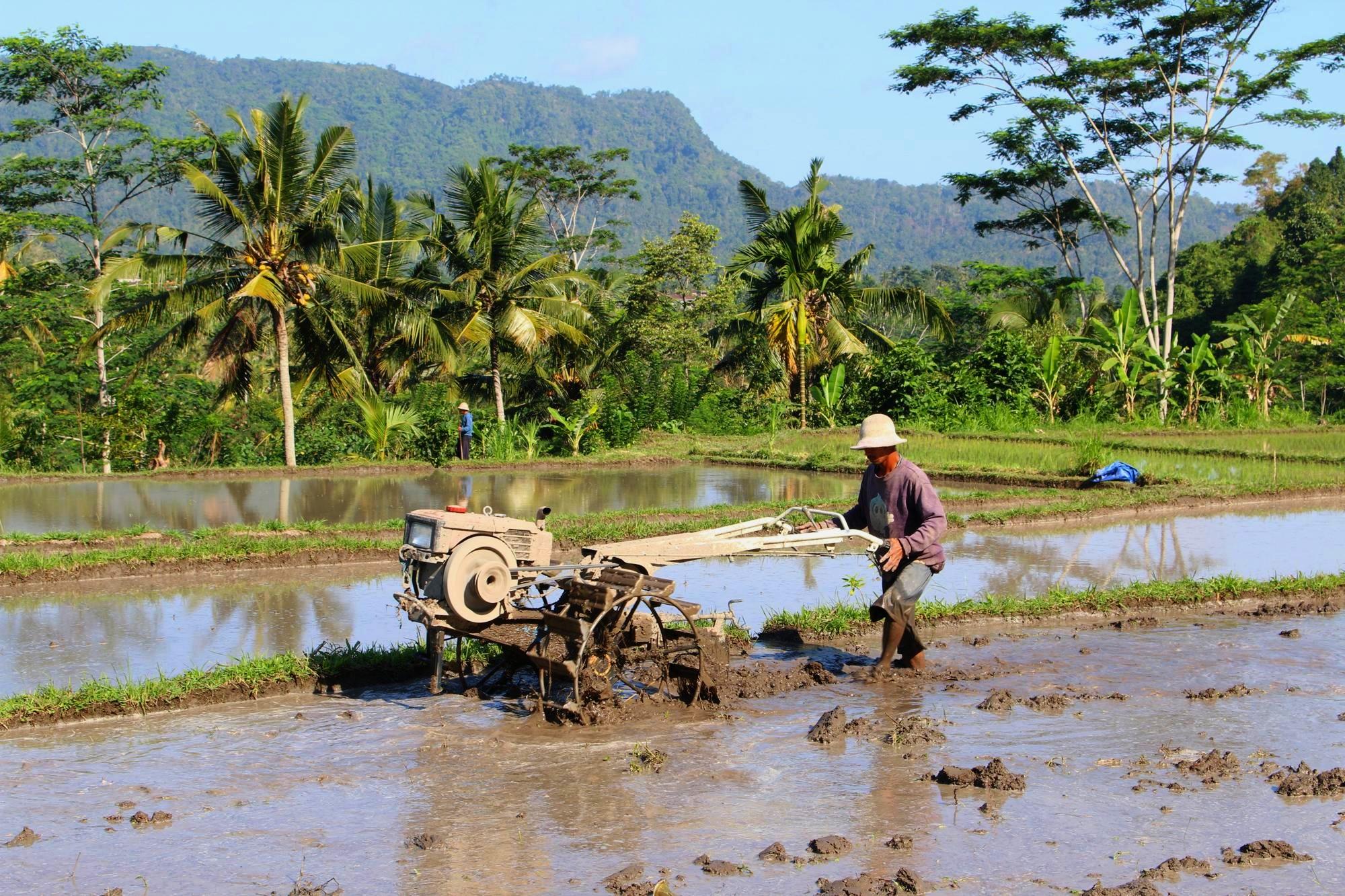 Sidemen Trekking Traktor